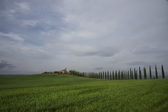 Val d'Orcia 14